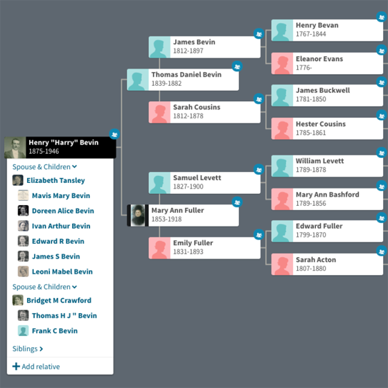 Family tree of Harry Bevin